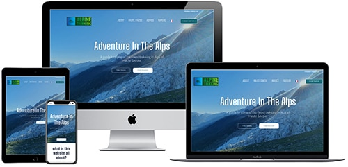 Website example for a independent business startup