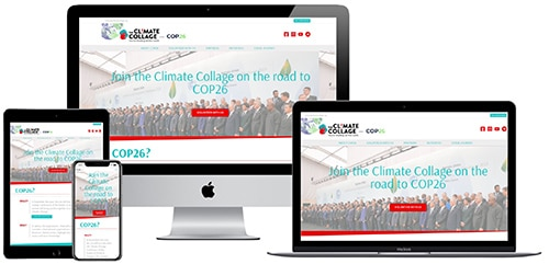 Web design services for a small business working in field of environmental activism